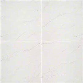 Aria Ice white Porcelain 24X24