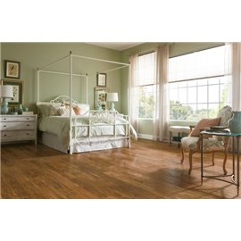 American Scrape Hardwood Hickory - Clover Honey