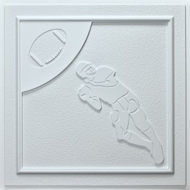 CT-1160 Football Ceiling Tile